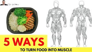 💪 5 Ways To Turn Food Into Muscle & NOT Fat - by Dr Sam Robbins