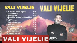 Vali Vijelie - Perversa