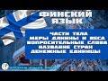 Финский Язык Suomen kieli - Урок 2 - Oppitunti 2 - Изучаем Языки Вместе