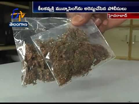 Ganja Mafia | Kingpin Arrested | by Hyderabad Police, 2.5 Kgs of Cannabis Seized