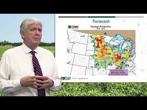 Advance Trading Soybean Market Update 9.22.2021