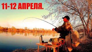 Рыбалка в Половодье Высокий уровень Сильное течение Мутная Вода Весна Река Красота