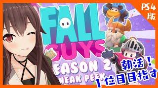 【Fall Guys/フォールガイズ】朝でも1位を目指して頑張るぞー!!!!!!!【PS4版/ゲーム実況】八重沢なとり VTuber