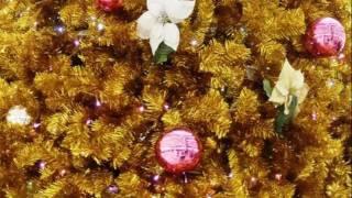 クリスマスソング連発!!