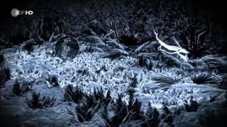 Das Geheimnis der Finsternis - Was steckt hinter der sichtbaren Welt? - Faszination Universum - ZDF