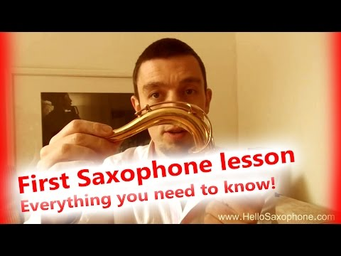First saxophone lesson 1 🎷 - Everything you need to know in one video! First notes!
