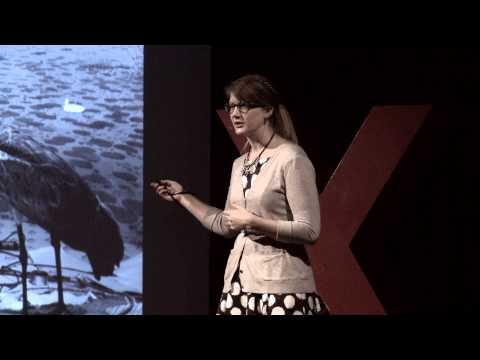The value of curiosity | Emily Graslie | TEDxSacramentoSalon
