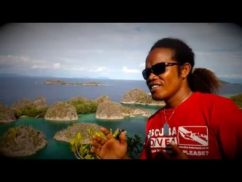 Insos Raja Ampat - Video Clip by Dive Indonesia