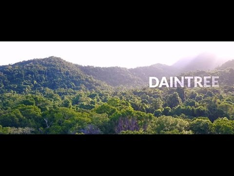 DAINTREE NATIONAL PARK I Mavic Pro Footage