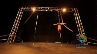 Florida Pole Fitness Championship 2013 Pro Division Competitor - Lesley Schooley