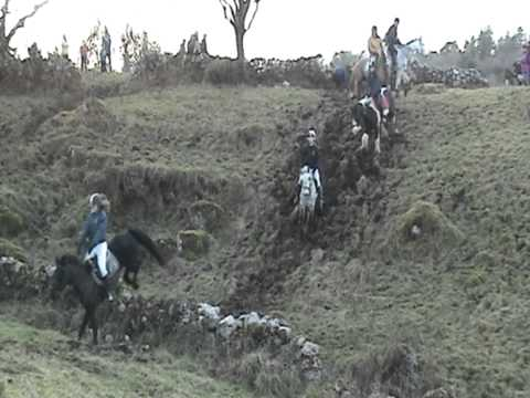 moycullen charity hunt 2012