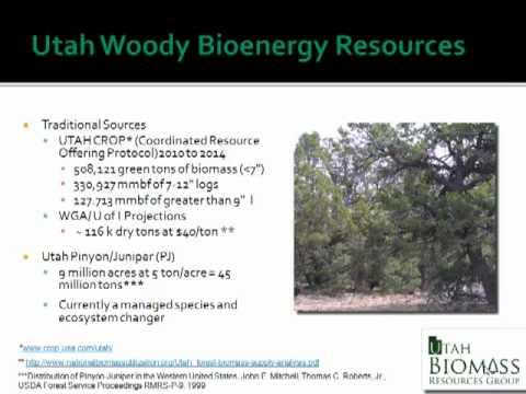 Bioenergy 101