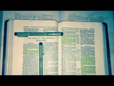 DAVID HOFFMAN - BIBLE INSIDE THE BIBLE