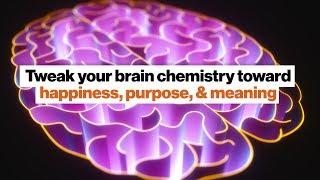 Tweak your brain chemistry toward happiness, purpose, meaning | Jillian Michaels
