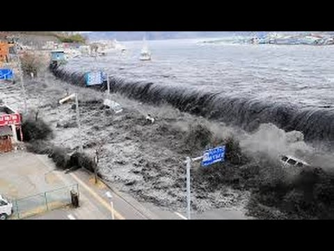 Tsunami alert issued near Moluccas in Indonesia after 7.3 ...