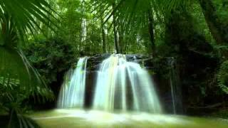 Ninne vaazhthaan en Vaakkukal Christian Devotional song with lyrics