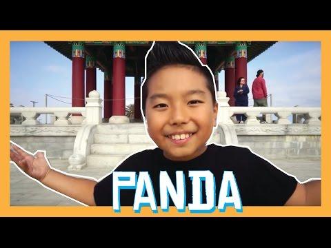 Desiigner - PANDA Dance Video   Aidan Prince   Matt Steffanina Choreography