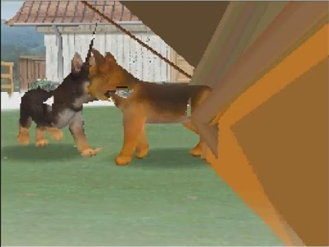Image result for corruption mod nintendogs