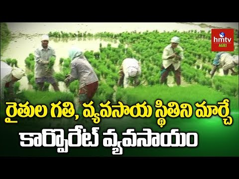 What Is Corporate Farming? | Is it Must for Agricultural Development? | hmtv Agri