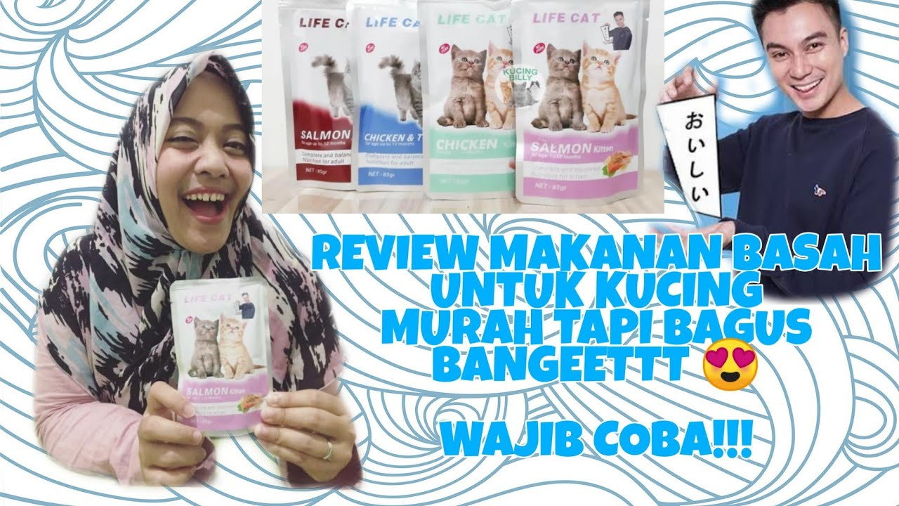 Review Makanan Kucing Wetfood Merk Life Cat 1 12 Bulan Kucing