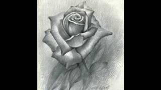Курс академического рисунка. Урок 15. Рисунок розы