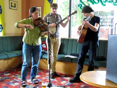Uckfield Festival 2011: So Last Century Stringband.