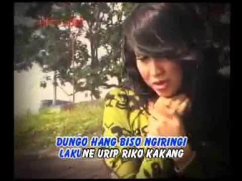 Suliana Sing Bakal Luntur