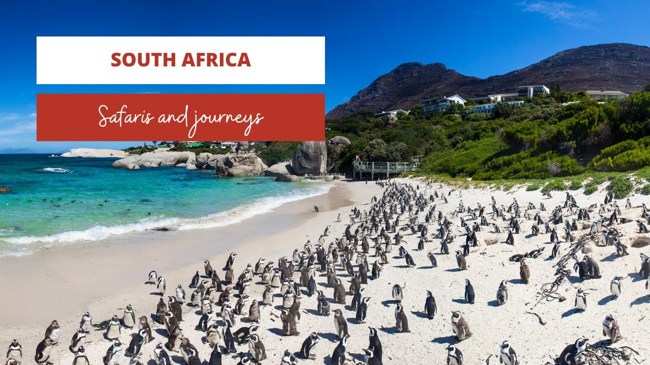 South Africa Holiday | Drive South Africa