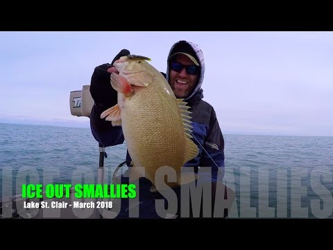 Ice OUT Smallmouth - Lake St. Clair 2018