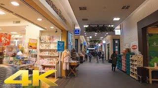 笹塚駅周辺をお散歩 - Walking around Sasazuka