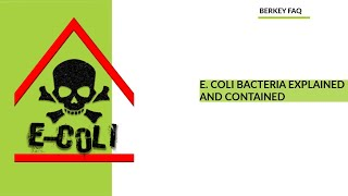 E. Coli Bacteria Explained and Contained