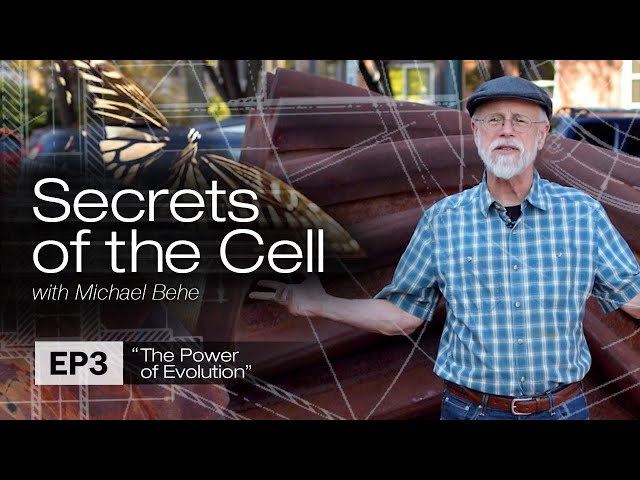 Bugs with Gears (Secrets of the Cell with Michael Behe, Ep. 3)