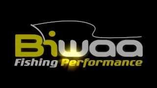 BIWAA SEVEN 2.0