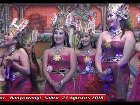 KENTANG JEMBUT-Jangger Sri Budoyo Pangestu,LASKAR SASAK CEMENG Live Sumber Kembang