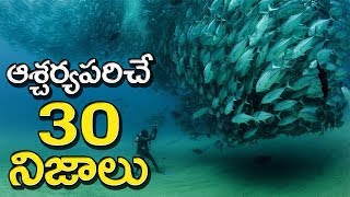 TOP 30 Amazing Facts You Never Know | Surprising Facts In Telugu | UF 2.0