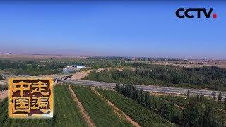 《走遍中国》 20191011 新农技 摘穷帽| CCTV中文国际