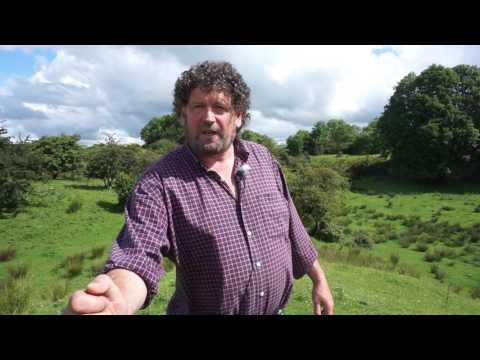 Ronan Kelly's Ireland: Pat's East Galway Fairies