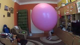 Video Climb in pink balloon download MP3, 3GP, MP4, WEBM, AVI, FLV Juli 2018
