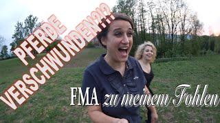 Pferde verschwunden! FMA zu meinem kleinen Fohlen ♥