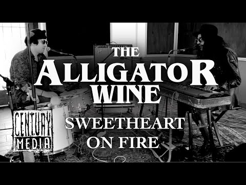 THE ALLIGATOR WINE - Sweetheart On Fire (Live)