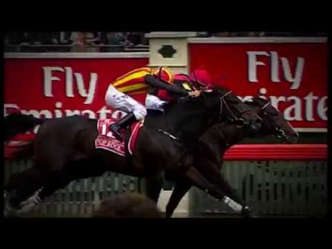 GLOBAL IMPACT: The Rise Of The Japanese Thoroughbred