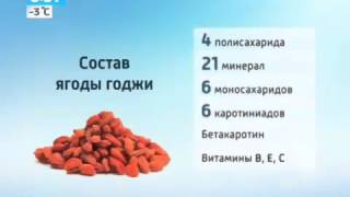 похудеть с помощью ягод годжи