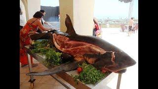 Акула в Краснодаре. Поймали акулу и пожарили. Стейк из акулы с соусом песто. Сибас и фруктовый сок