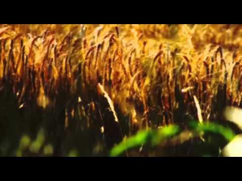 POESIE IN MUSICA Gozzano - Le Golose - Franca Nuti - Einaudi from YouTube · Duration:  2 minutes 3 seconds
