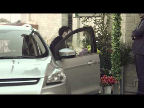 Pasha Insurance. Motor Insurance. Short Version. Flowers.