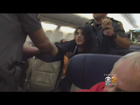 Woman Removed From Flight After Claiming Allergies Of Dogs On-Board
