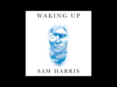 Sam Harris Podcast - Meditation and Psychadelics with Yuval Noah Harari