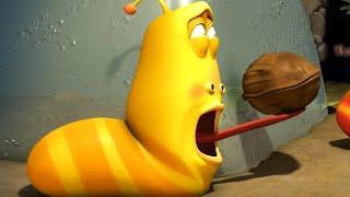larva - nut job  cartoons for children  larva 2018  funny animated cartoon  larva official