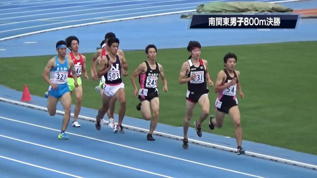 2016関東高校陸上南関東男子800m...