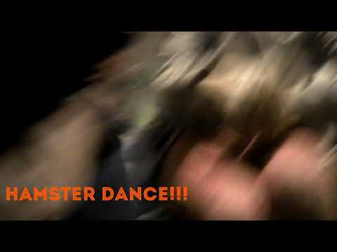 Happy Hamster dance Remix